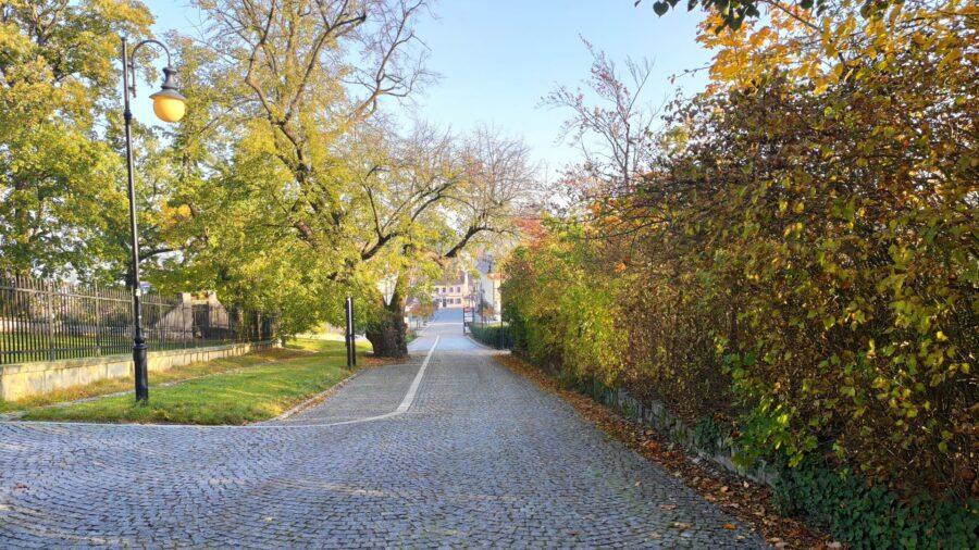 Cesta k zámku (který nevidíte po mé levé ruce) směrem od náměstí (vzadu).
