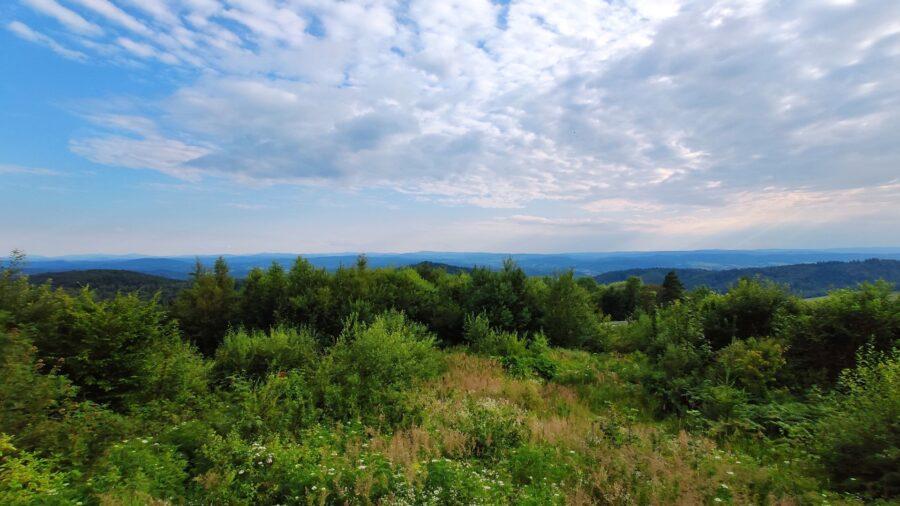 Výhled nad Sanokem na Východní Karpaty